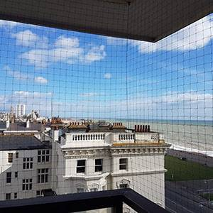 bird proofing Brighton