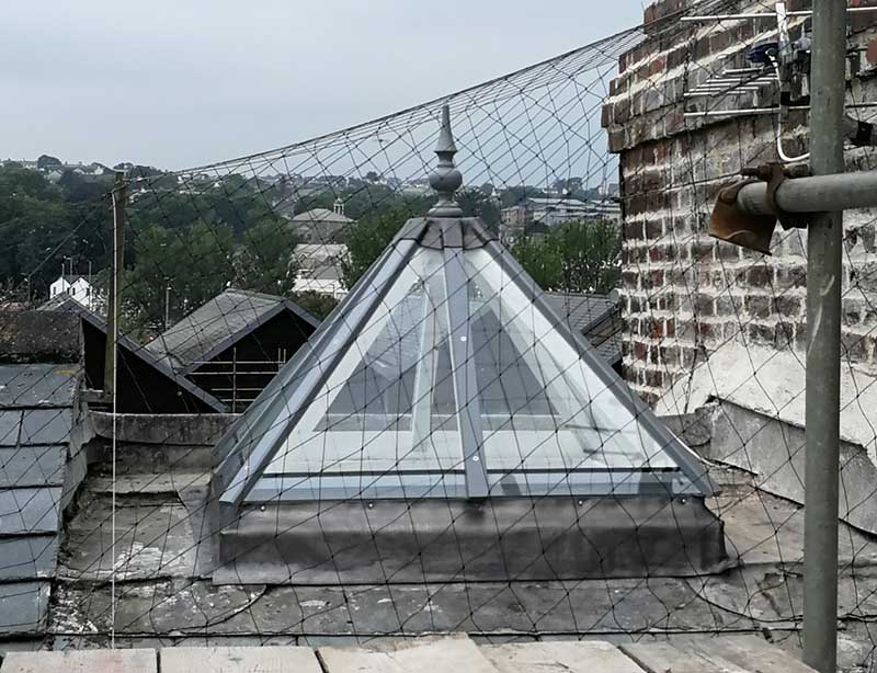 bird netting over a skylight