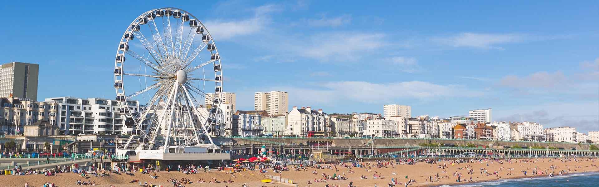 pest control & eradication Brighton